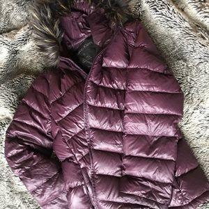 Purple Calvin Klein winter coat